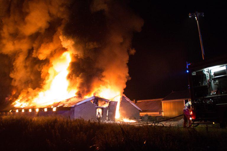 Brand kippenschuur Nijkerk